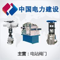 上海电力修造总厂有限公司