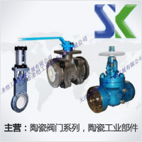 天津市圣愷工業技術發展有限公司