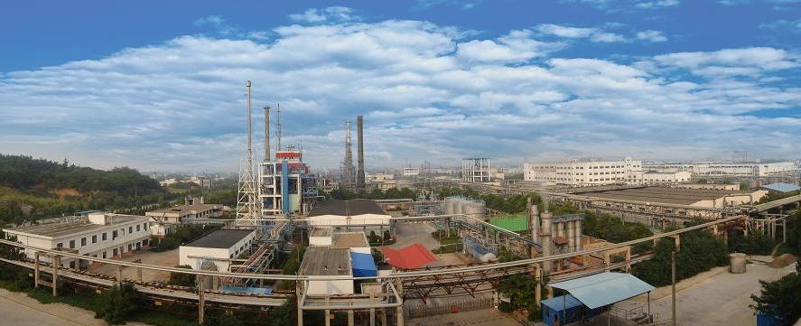 中国最大的氰化物生产基地邀请万讯提供技术交流