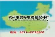 杭州临安标准橡塑配件厂宣传片