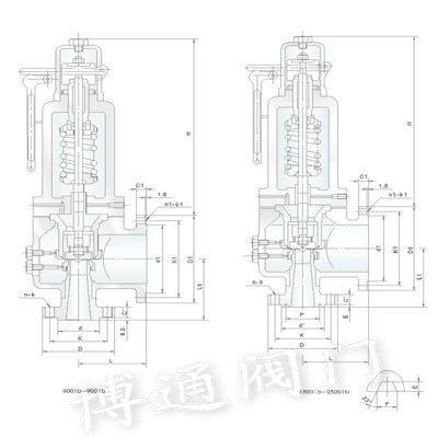 SHGS美標高性能蒸汽安全閥