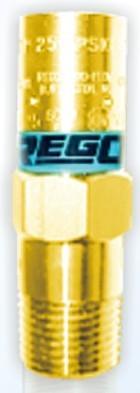 美国REGO管道安全阀RPV9432T350安全阀PRV9433T