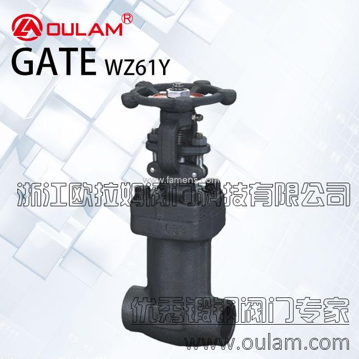 波纹管锻钢闸阀/焊接式波纹管闸阀WZ61Y型