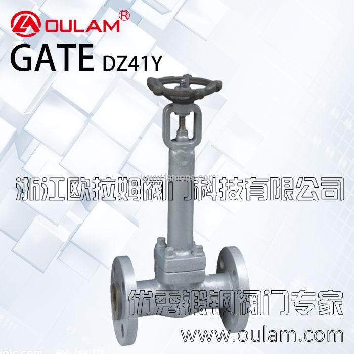 锻钢闸阀/低温闸阀DZ41Y型