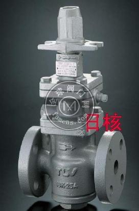 日本TLV蒸汽用减压阀_COSR-16日本TLV蒸汽减压_DR20-10日本TLV蒸汽、空气减压阀-上海销售日本TLV蒸汽空气减