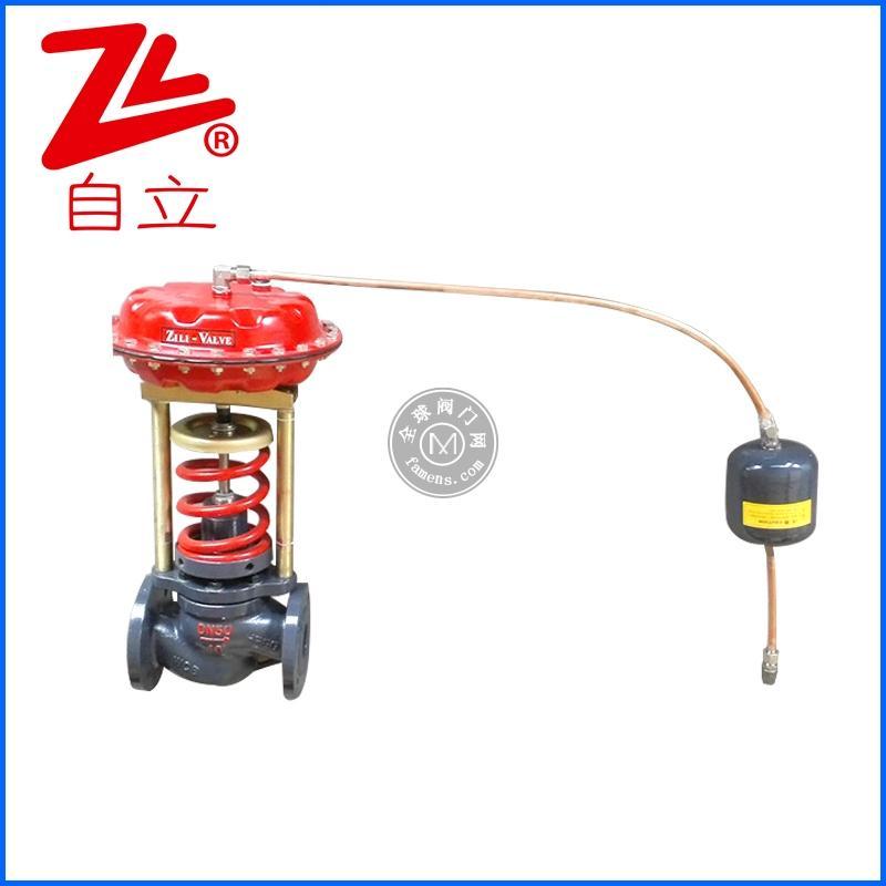 自力式蒸汽減壓閥壓力調節閥