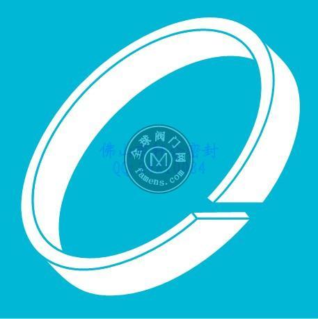 德國B+S 海模 斯來圈 耐磨環 導向環