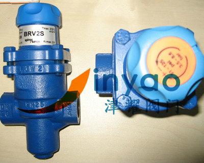 斯派莎克减压阀BRV2S  减压阀大图