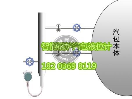CR-G6032智能锅炉汽包液位计