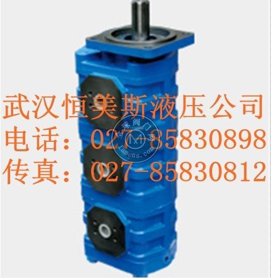 齒輪油泵P5100-F50NF48614/F40TFCG
