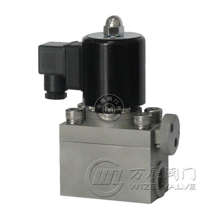 WZG水用高壓電磁閥
