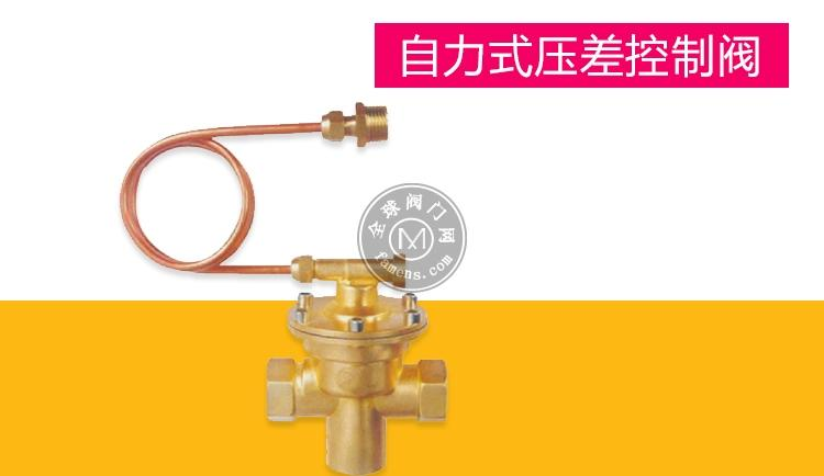 南京卓科六合彩特码资料直销回水型ZY-4M碳钢压差控制阀