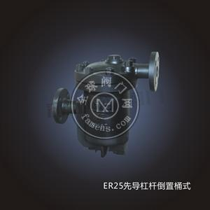 ER25先导杠杆倒置桶式疏水阀
