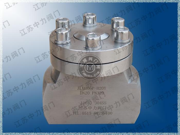 DH61Y不锈钢低温高压止回阀现货