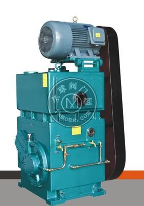 2H-150滑阀真空泵