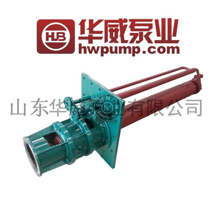 泵生產廠家 山東華威 廠家直銷脫硫液下泵 TLY65-250