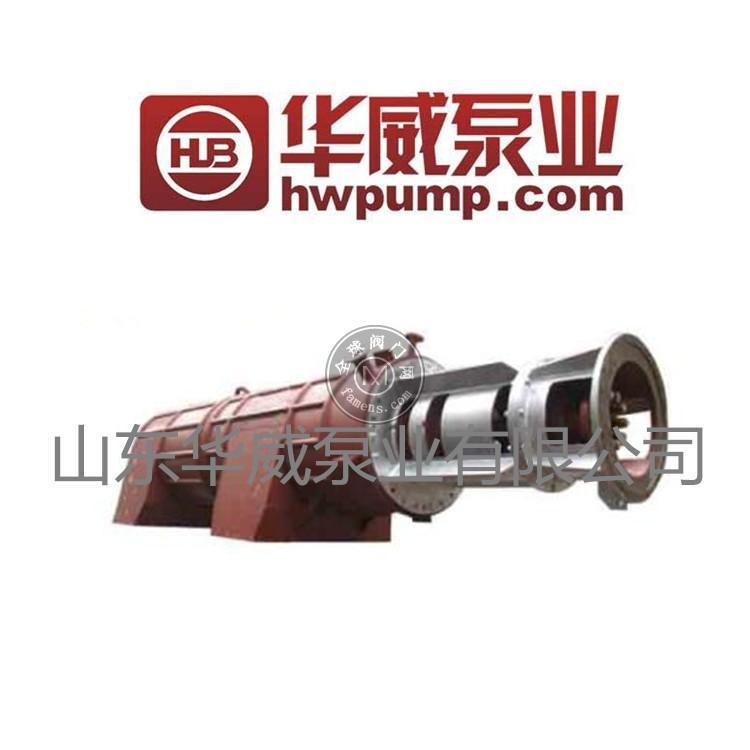 熔鹽泵生產廠家 山東華威 RYB型熔鹽軸流泵