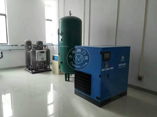 博萊特空壓機,雙螺桿泵