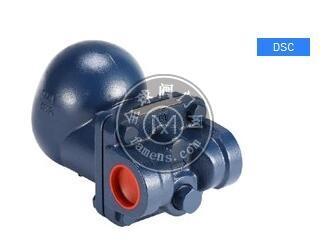 台湾DSC F2/浮球式蒸汽疏水阀