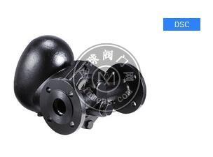DSC疏水阀DSC FS08F/铸钢浮球式蒸汽疏水閥