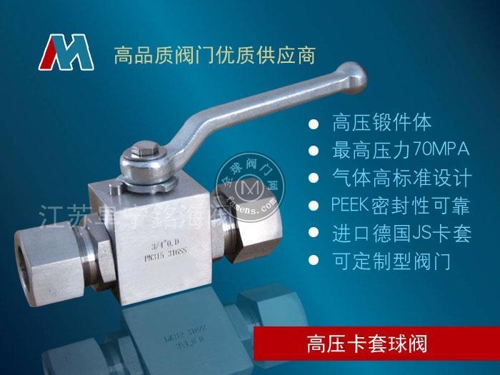 Q91N氣體高壓卡套球閥