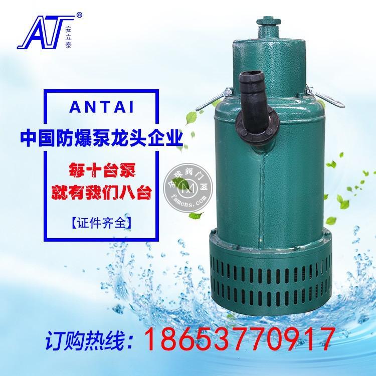 杭州污水处理潜污泵型号 防爆潜水泵批发