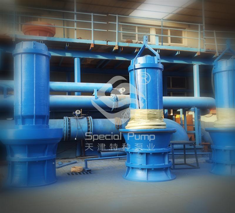 泵站專用潛水軸流泵