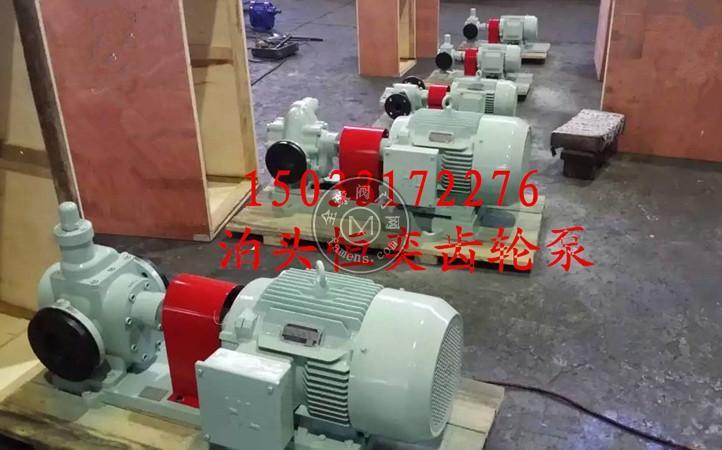 圆弧齿轮泵 润滑油泵 循环油泵