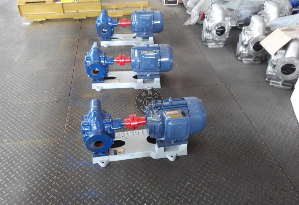 齿轮油泵 防爆齿轮油泵 变频防爆齿轮油泵