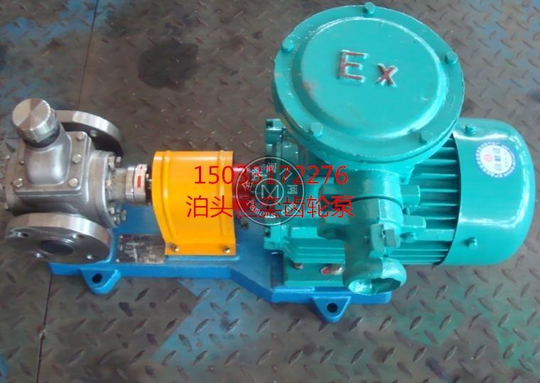 不锈钢齿轮泵 变频不锈钢齿轮泵 化工齿轮泵