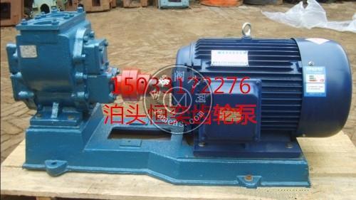 尼龙齿轮泵 防爆齿轮泵 铜轮防爆齿轮泵
