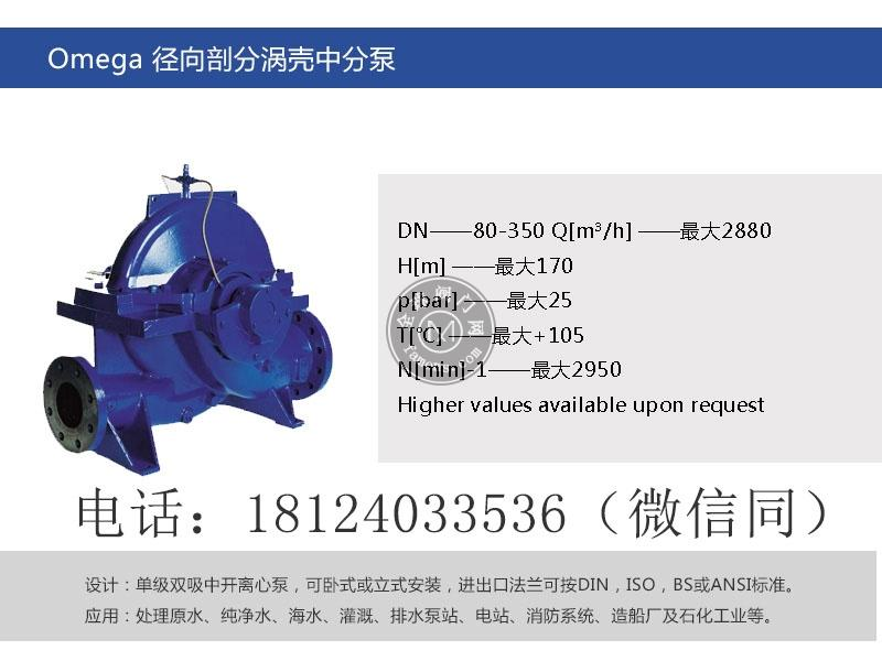 KSB凯士比Omega系列轴向剖分涡壳泵-深圳市荣泽节能环保设备有限公司