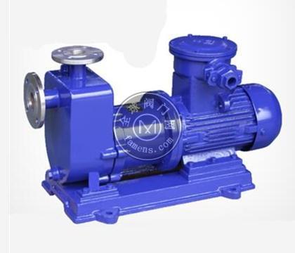 ZCQ系列不銹鋼自吸磁力泵