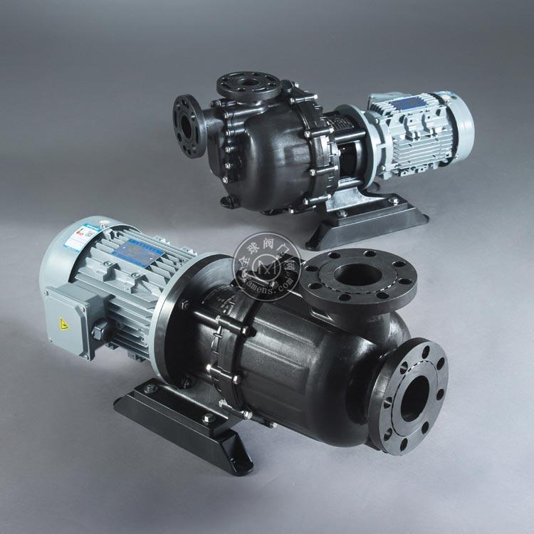 高扬程自吸泵选型 大头泵结构图