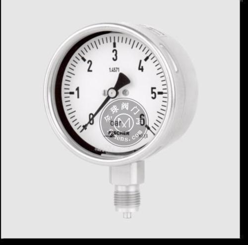 优势供应德国Fischer压力表-大连力迪流体控制技术有限公司