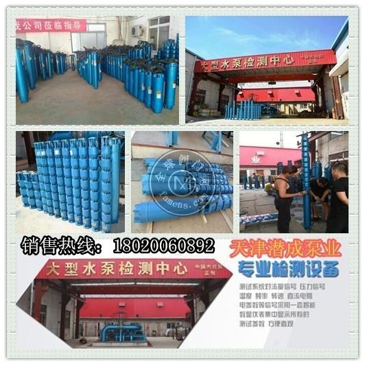 农田灌溉使用150QJ深井泵-天津水泵厂家面向云南地区销售