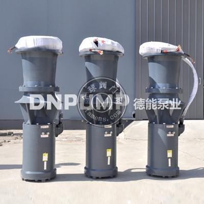 供應天津德能泵業各種大型通用QZB潛水軸流泵