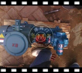 高温油脂输送齿轮泵增压泵