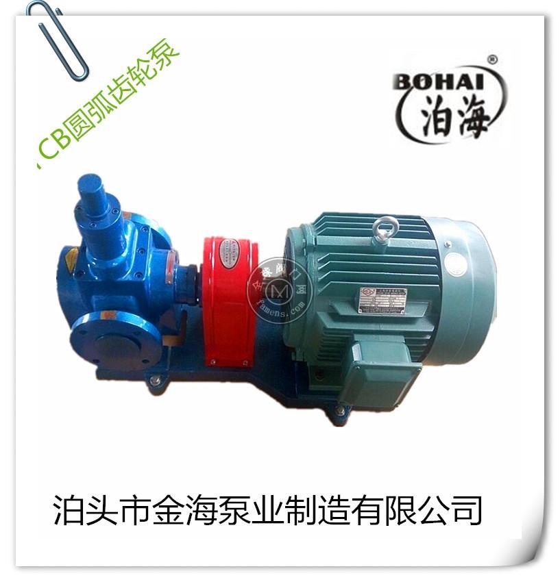 泊头齿轮泵厂家直销YCB圆弧齿轮油泵高压齿轮泵内齿轮泵