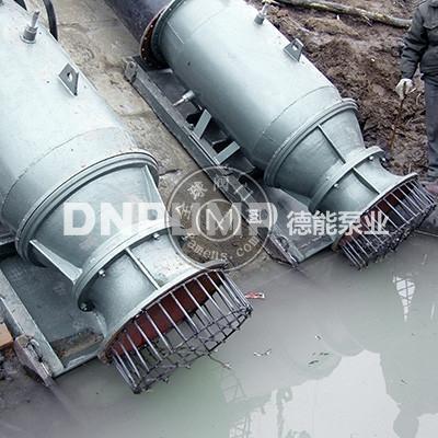 供應天津德能泵業里茨技術電機各種潛水軸流泵