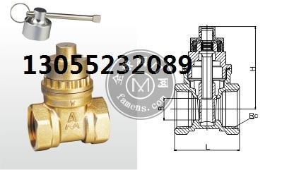 宁波埃美柯198黄铜磁性 带锁闸阀Z15W-16T