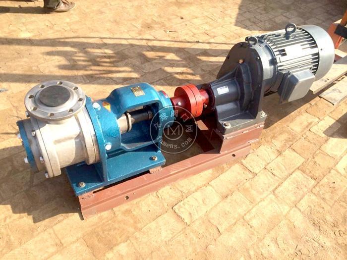 NYP型内环式高粘度泵