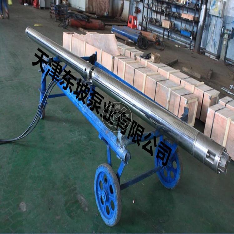 天津潛油電泵