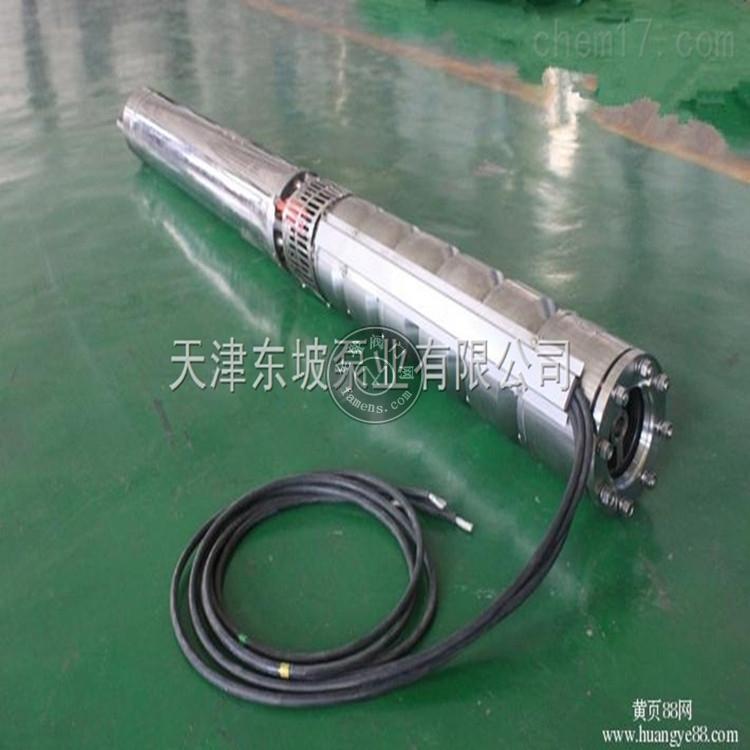 海水潛水泵