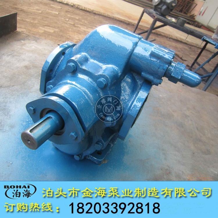 2CY齒輪泵大流量高壓耐磨衛生食品泵無泄漏輸送不銹鋼齒輪泵泊頭