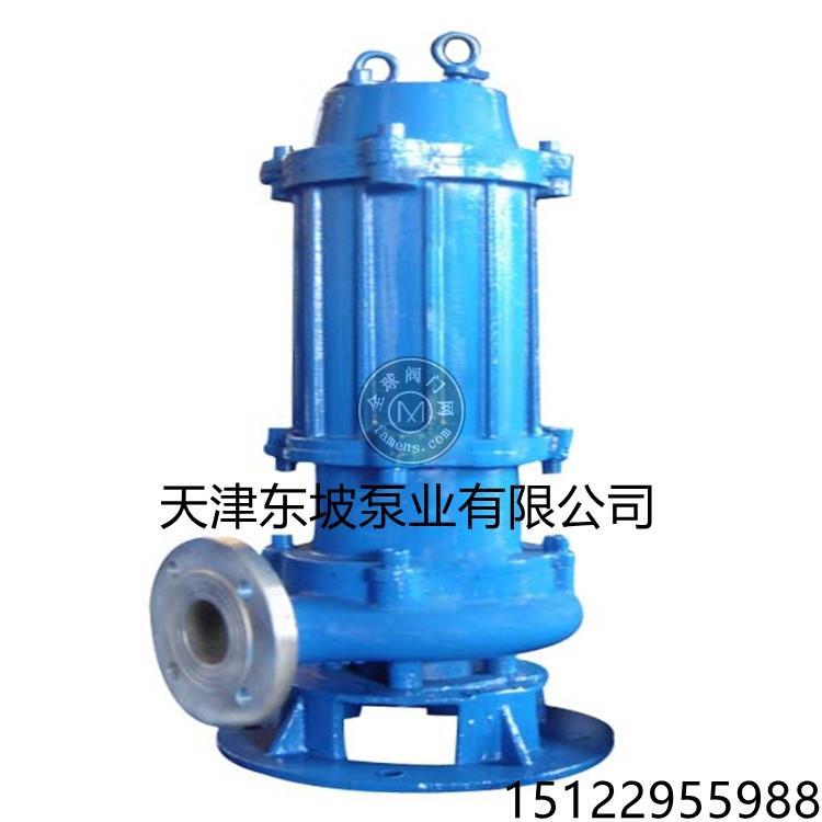 大流量污水泵  天津污水泵品牌