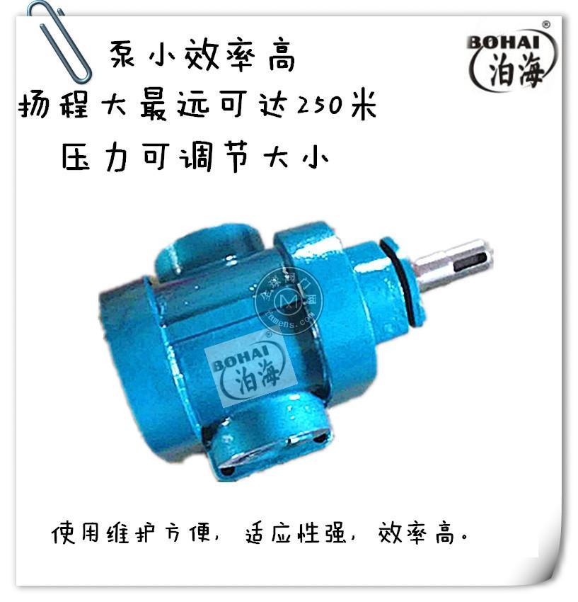 泊头金海泵业2CY系列皂液齿轮泵传输输送泵型号价格齐全