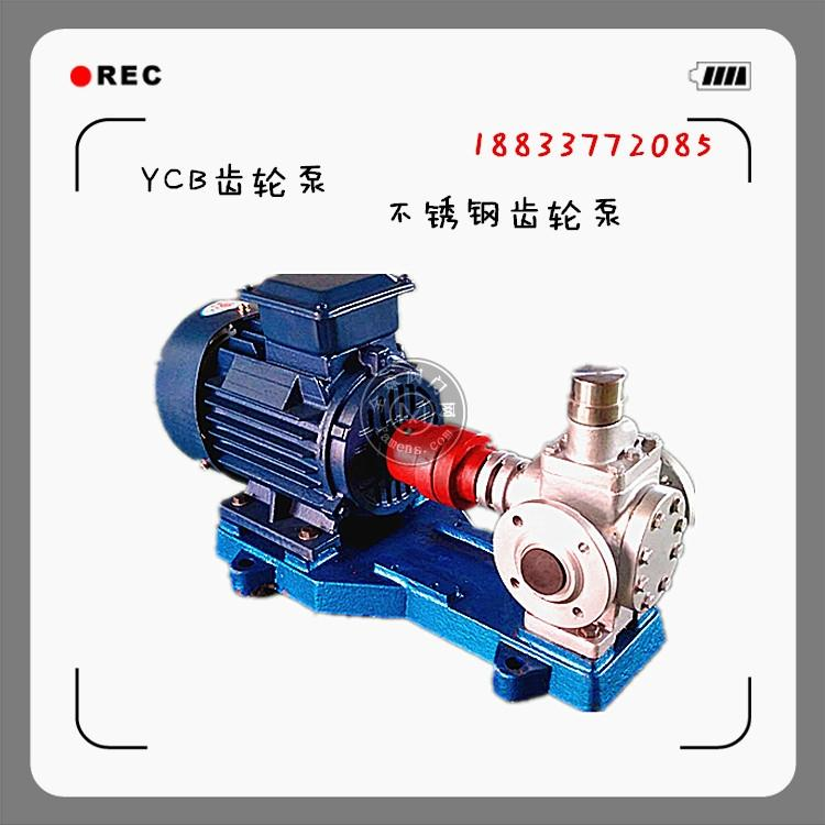 泊頭直銷316L不銹鋼齒輪泵移動式齒輪泵耐酸堿齒輪泵