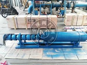 性价比高的浮筒式潜水泵-耐用的潜水泵厂家直销