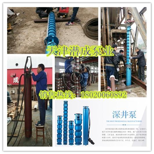 天津井用深井潜水泵厂家-天津潜成泵业型号齐全的厂家